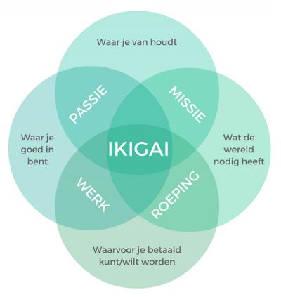 Werk vinden dat bij je past met Ikigai